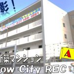 Ataipu 動画